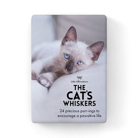 Affirmation Boxed Cards / The Cats Whiskers