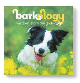 Barkology - Wisdom from the Dogs