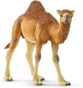 Schleich Collectables - Dromedary