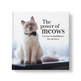The Power of Meows