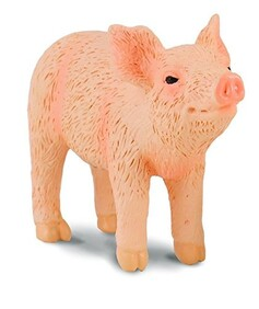 Collect A - Piglet (smelling)