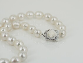 Cameo clasp with a strand of Australian South Sea pearls