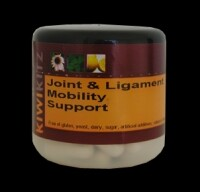 Glucosamine Chondroitin MSM pain relief and joint mobility