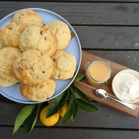 Sweet scone - Cranberry scones with jam and cream 10 pack