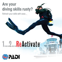Reactivate/ Refresher Dive