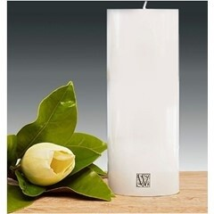 Waxglo Cylinder Candle - White 100x250mm