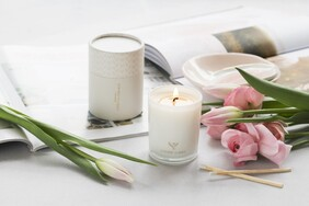 Living Light Wild Plum Soy Candle - Mini 30hrs