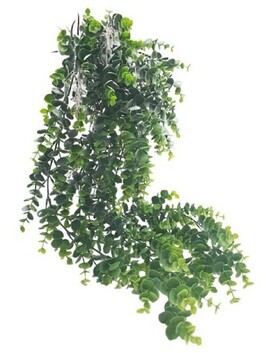 Flower Systems Eucalyptus Potted Hanging 66cm - Grey/Green