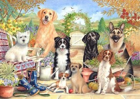 Otter House Jigsaw Puzzle Waiting for Walkies - 500pce
