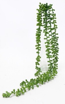Flower Systems Succulent String of Beads 73cm - Green