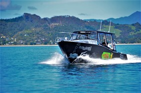 Local Dive Trips