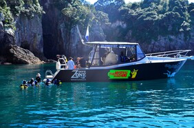 Try Dives From Our Dive Boat