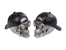 Silver Skull with Sunnies