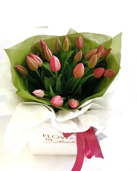 A Bag of Tulips