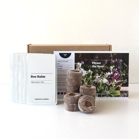 Gibson & Green - Please The Bees Grow Kit