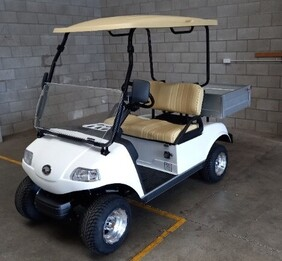 Cargo 2 Electric Utility Cart with Lithium Battery