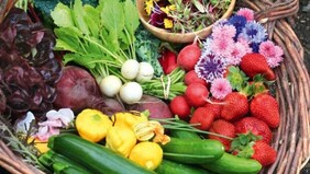 Additional produce for your veggie Box