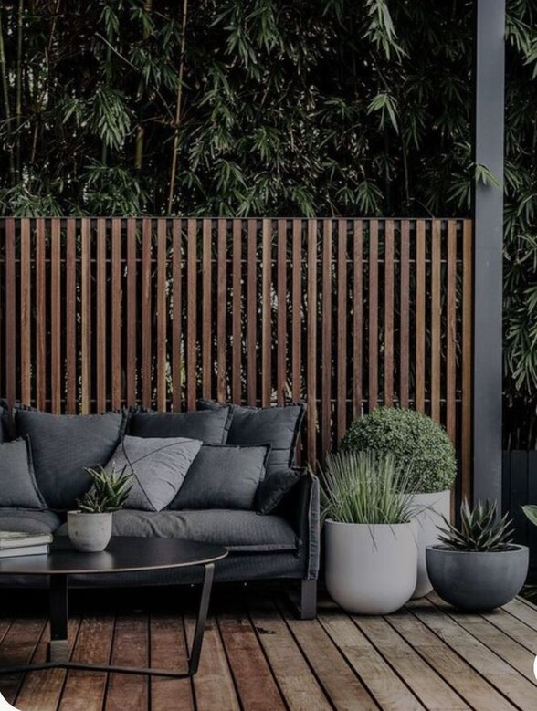 Daily Garden Advice Tips For The Diy, Tall Potted Plants Patio Privacy Nz