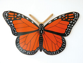 Butterfly  Magnetic
