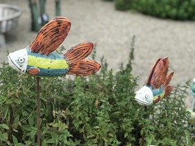 Funky Flying Fish