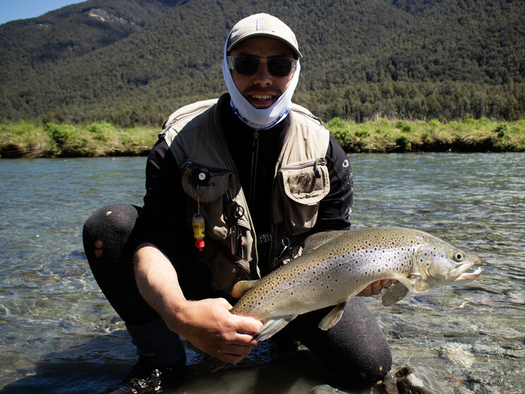Strong wild back country brown. Todd Adolph