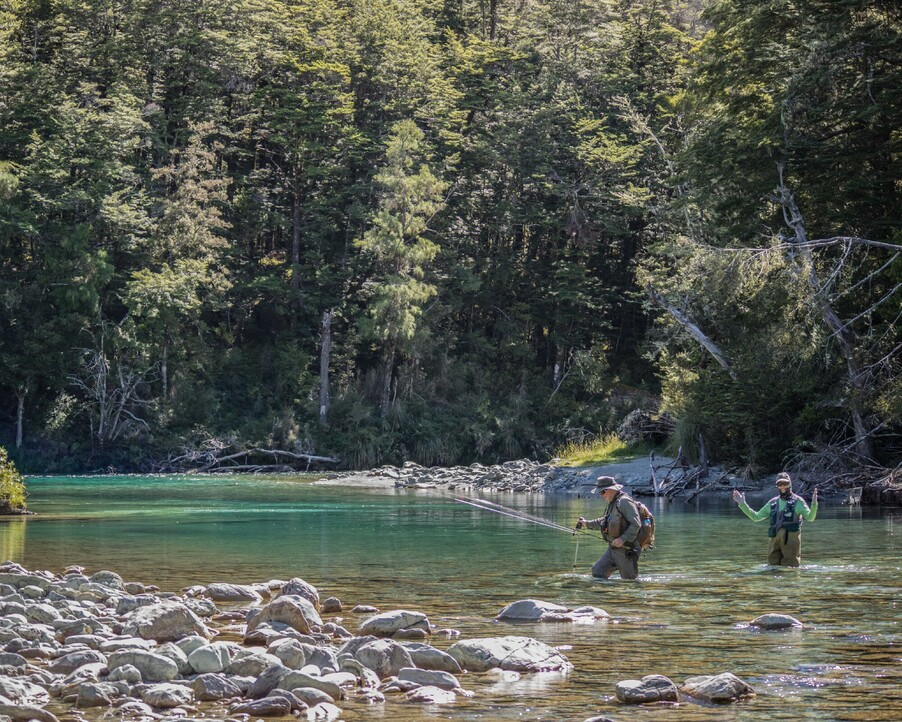 The day we found a trophy Brown trout in the pool of dreams Todd Adolph