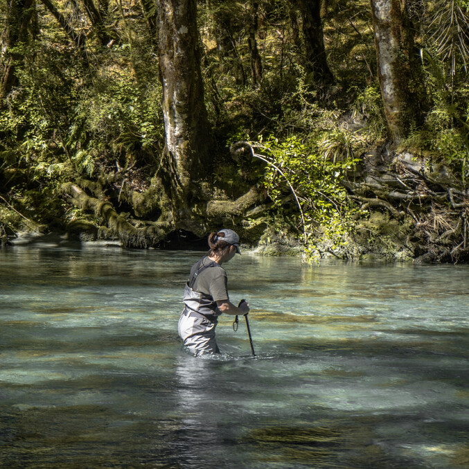 Wading in the gin-clear waters of New Zealand  Todd Adolph