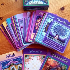 Cards : The Magic of Nature by Belinda Paton