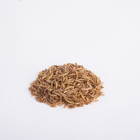 Dried Mealworms repacked