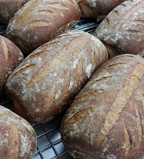 Sour Dough loaf (Saturday Deliveries Only)