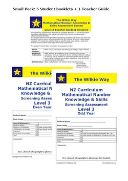 Level 3 Assessment Screen Small Pack