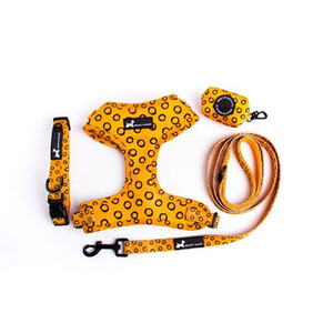 Healthy Dog Co | Full Dog Harness Set - Yellow Harvest Small