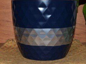 Blue with Silver Belt Planter