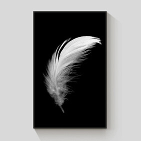 White Feather framed canvas 70x100cm