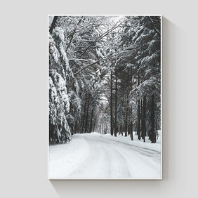 Winter Forest framed canvas 90x120cm