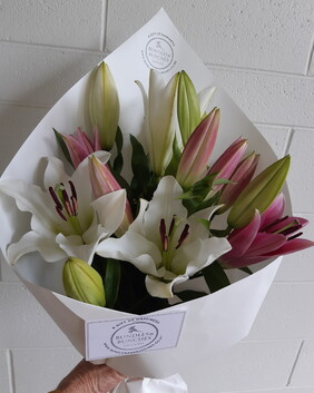 Perfection Pink and White Oriental Lillium