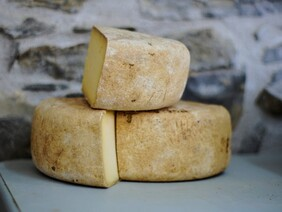 Calling all Extroverted Cheese-Makers!