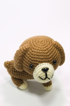 Brown Sausage Dog