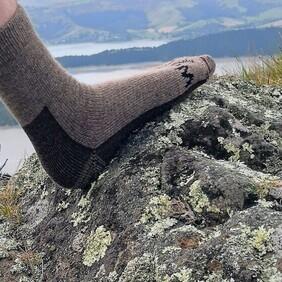 Casual Sock