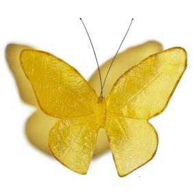 Butterflies - Glass