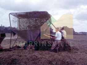 Photo - Making silage in 1963