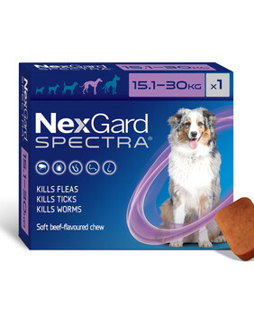 Nexgard Spectra  |  Chewable flea and worm treatment for dogs