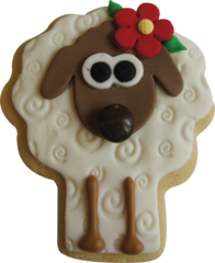 Novelty Cookie